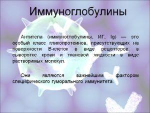 Иммуноглобулины