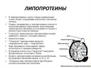 Липопротеины