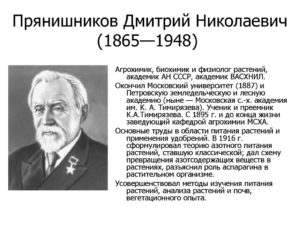 Дмитрий Николаевич Прянишников