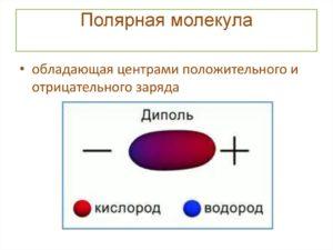Полярные молекулы