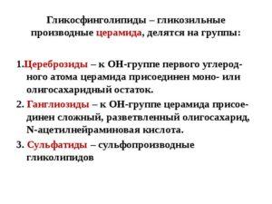 ГЛИКОСФИНГОЛИПИДЫ