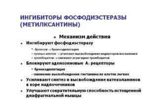 ФОСФОДИЭСТЕРАЗЫ