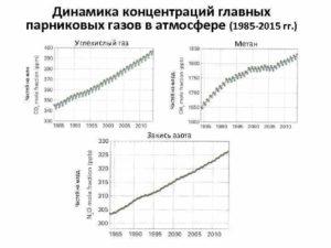 Причины снижения содержания углекислого газа в атмосфере при изменениях климата