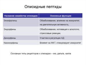 Опиоидные пептиды