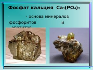 Кальция фосфаты