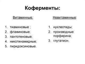 КОФЕРМEНТЫ