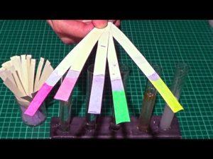 Лакмусовая бумага своими руками