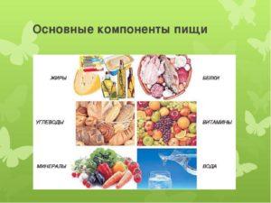 Самый важный элемент в питании человека