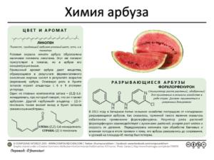 Химия арбуза