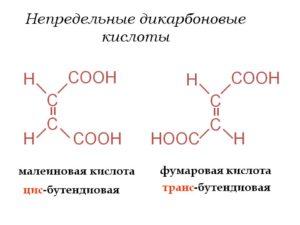 Малеиновая и фумаровая кислоты