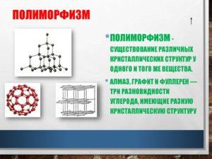 Полиморфизм