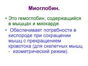 МИОГЛОБИН
