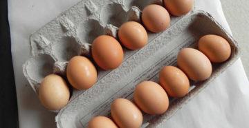 Поддельные куриные яйца из Китая