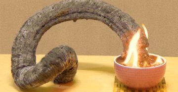 Фараонова змея