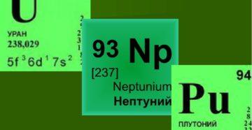 Нептуний и плутоний