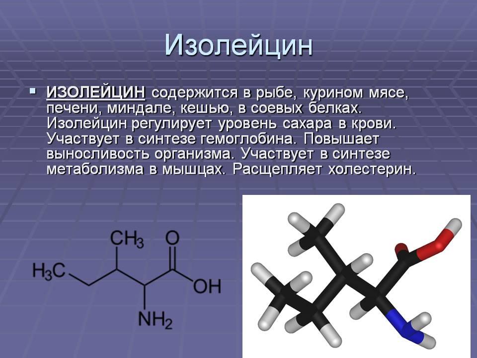 Изолейцин в каких продуктах, в чем содержится лейцин?