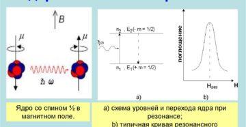 Ядерный магнитный резонанс
